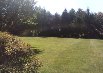 entretien jardin 1 - Aménagement Jardin